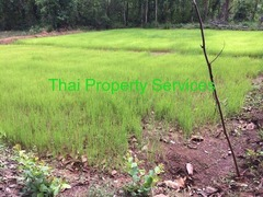 Retirement village for Thai and foreigners
