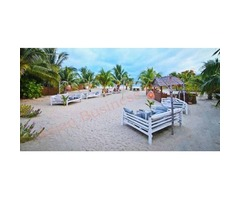 6705002 Profitable and Established Beachfront Restaurant and Bar in Koh Pha Ngan