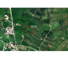 12 Rai of Land for sale in a Buriram Village