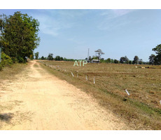 Surin Province 41 rai Farmland for sale.